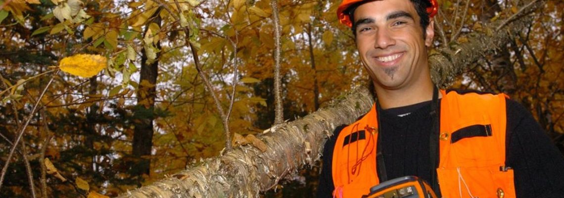New Brunswick Forest Industry Economic Impacts